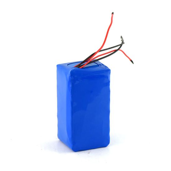 E-Bike Battery 24V 10ah Lithium Ion Battery for Electric Bikes