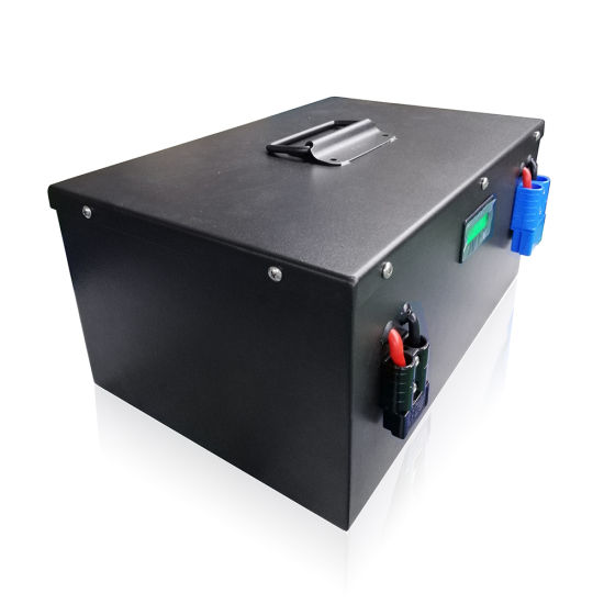 Deep Cycle Batterie Lithium LiFePO4 24V 100ah for Solar System/Motor Home/Boat/Golf Carts Car Battery