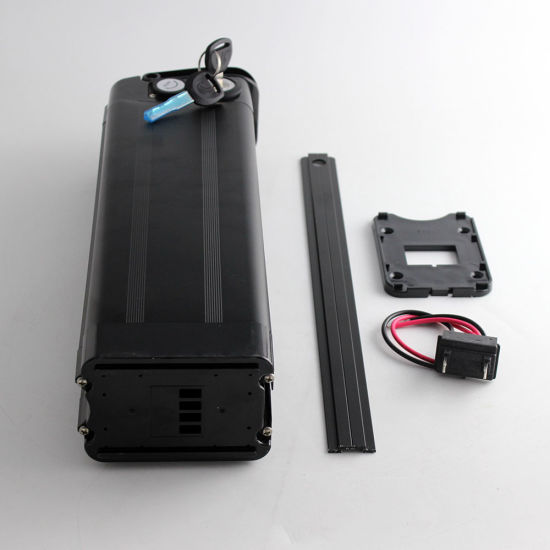 48V 20ah Lithium Battery Pack for 500W/ 750W/ 1000W Electric Bike