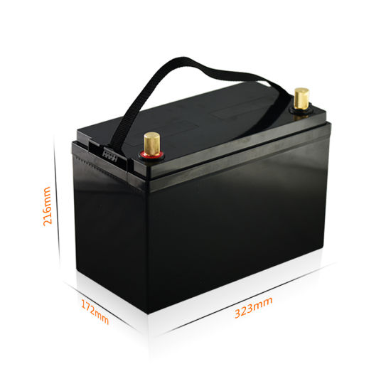 12V 100ah LiFePO4 Lithium Iron Phosphate Battery Pack with Black Case and BMS
