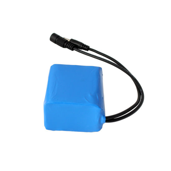 Portable 12V 4ah Mini Lithium Rechargeable Battery Pack 3s2p