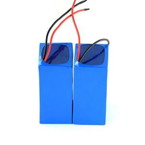 Wholesale Lithium Ion Battery 12V 20ah China Manufacturer