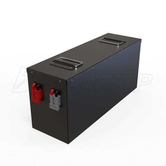 Customized 12V 300ah Lithium Ion LiFePO4 Battery Pack with BMS