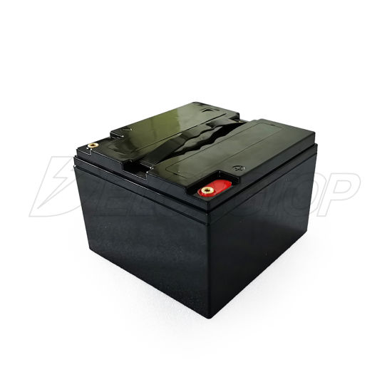 Factory Direct Customized Lithium LiFePO4 12V 25ah Battery Pack with BMS
