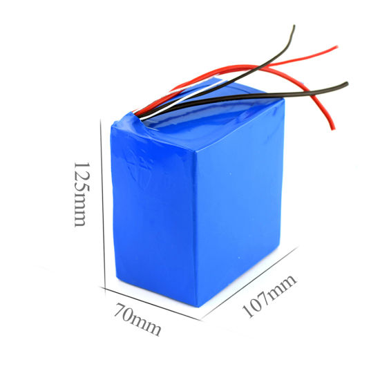 10.5ah Nominal Capacity 36V Lithium Battery Pack for Electric Bike