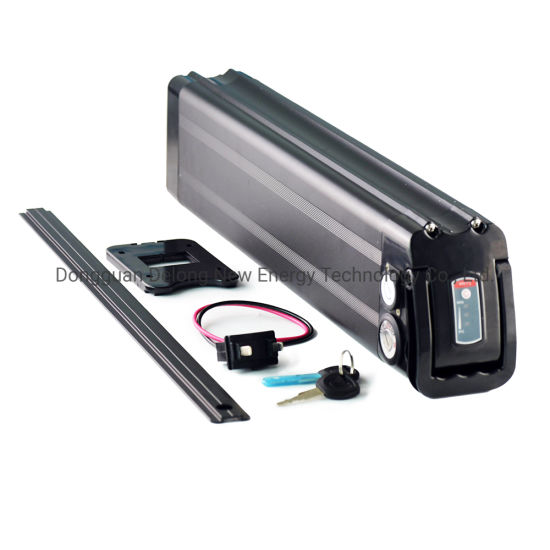 Rechargeable 48V 20ah Silver Fish Lithium II Ion Battery