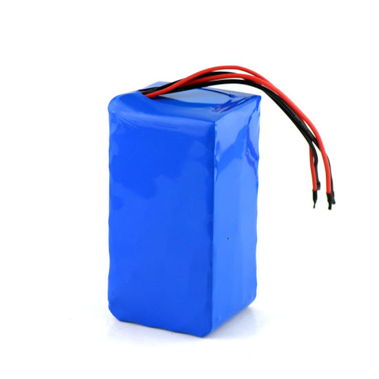 Rechargeable Lithium Ion Battery Pack 6s2p 18650 22.2V 6000mAh with BMS